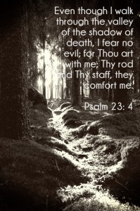 comfort when fearful