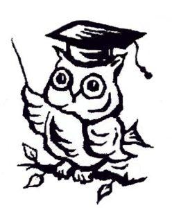 prefontal cortex or wise owl